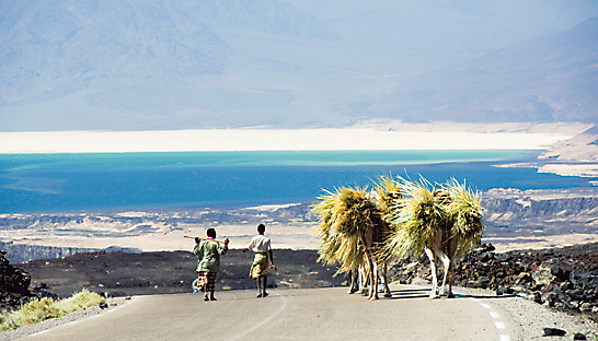 Djibouti Torism | Home